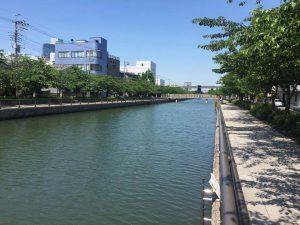 夏の江戸川